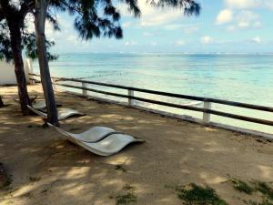 Ylang-Ylang - , , Mauritius