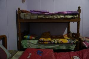 Safary Hostel