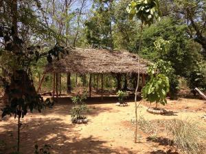 Guruge Villa Habarana, Inns  Sigiriya - big - 26