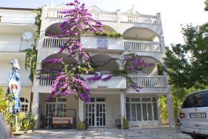 Apartments Cipetic