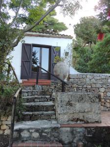 Villa Adamo, Ville  Scopello - big - 11