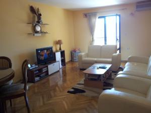 Apartment Radovic