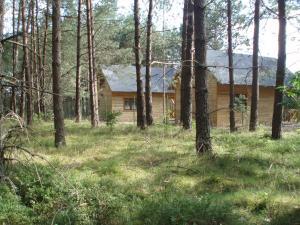 Leśny Zakątek, Lodge  Koscierzyna - big - 16