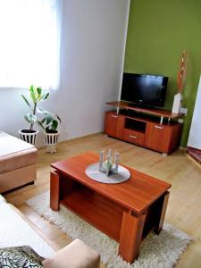 Apartment Vienna, Апартаменты  Дрежник Град - big - 10
