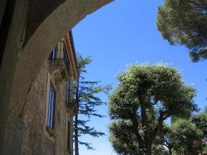 Casa Albini, Bed & Breakfasts  Torchiara - big - 23