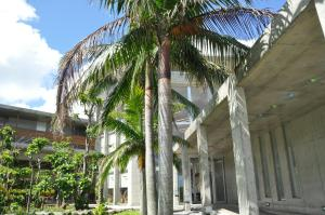 Такетоми - Iriomotejima-Jungle Hotel Painumaya