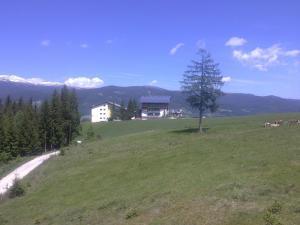 Aqua Reiki Ski Hotel Klippitz Nordost, Отели  Reichenfels - big - 36