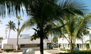 Hotel La Fragata, Hotely  Coveñas - big - 33