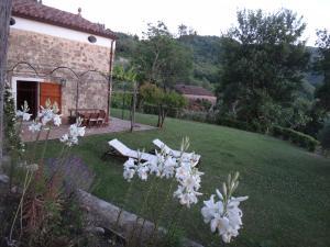 Casa Albini, Bed & Breakfasts  Torchiara - big - 20