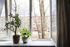 Апартаменты Золотая Горка - фото 4