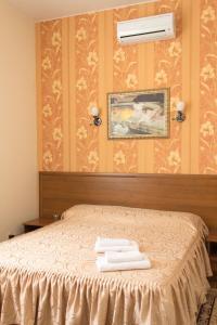 Отель Шарм - фото 14
