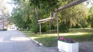 Гостиница Сосновая роща - фото 21