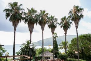 Apartments Martinetti, Appartamenti  Herceg-Novi - big - 30
