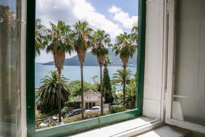Apartments Martinetti, Appartamenti  Herceg-Novi - big - 4