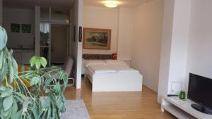 Viennaflat Apartments - 1010, Apartmány  Vídeň - big - 35