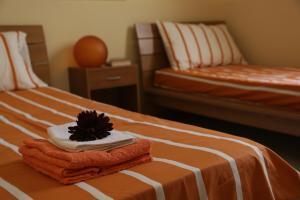 Apartment Inn, Nyaralók  Aci Castello - big - 8