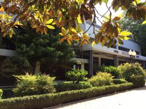 Отель Сочи-Магнолия - фото 16