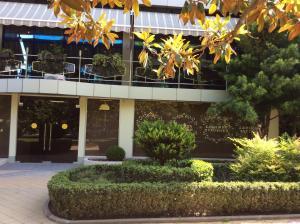 Отель Сочи-Магнолия - фото 15