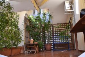 Delizioso Mare, Apartmány  Aci Castello - big - 11