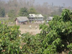 Suan Pin Houses, Загородные дома  Пай - big - 3