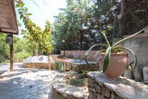 Villa Adamo, Vily  Scopello - big - 35