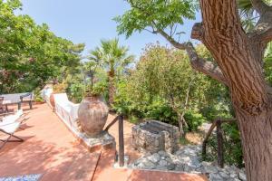 Villa Adamo, Vily  Scopello - big - 37