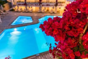 Ariadne Hotel Apartment, Apartmánové hotely  Platanes - big - 30