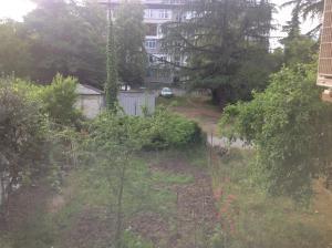Апартаменты в Пицунде - фото 20