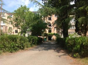 Апартаменты в Пицунде - фото 23