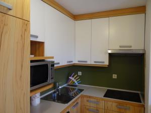 Apartment HB, Appartamenti  Moravske-Toplice - big - 7