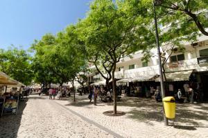 Sunny Studio Albufeira, Appartamenti  Albufeira - big - 2