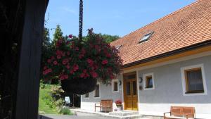 Weingut Dietl, Apartmány  Riegersburg - big - 81