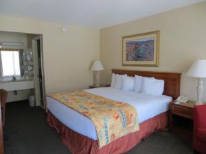 The Durango Downtown Inn, Hotels  Durango - big - 15