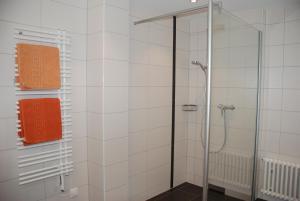 Chesa La Furia, Apartmanok  Pontresina - big - 63