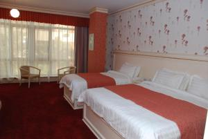 Отель Alp Inn - фото 12