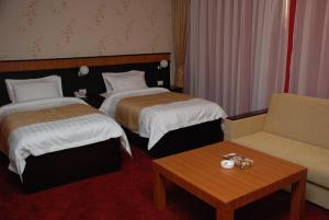 Отель Alp Inn - фото 14