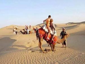 Desert Safari Experts