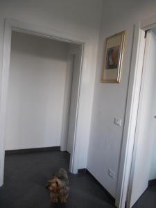 Appartamento Maria Grazia, Apartmány  Portovenere - big - 14