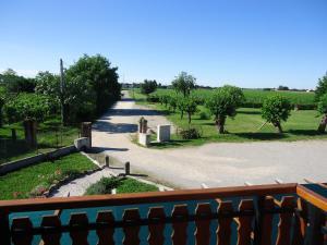 Agriturismo Al Gelso, Bauernhöfe  Risano - big - 32