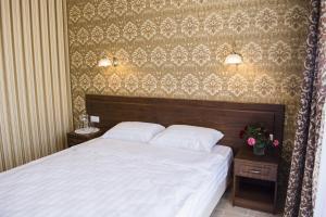 Гостиница Диона - фото 26