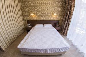 Гостиница Диона - фото 24