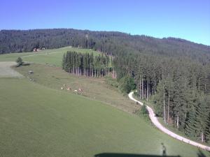 Aqua Reiki Ski Hotel Klippitz Nordost, Отели  Reichenfels - big - 31