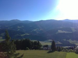 Aqua Reiki Ski Hotel Klippitz Nordost, Отели  Reichenfels - big - 23