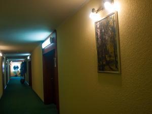 Отель Мир - фото 18