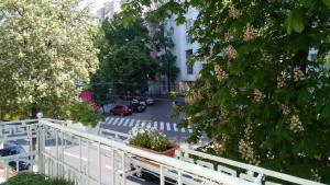 Отель Мезон Бланш - фото 5