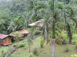 Pacuare River Lodge, Лоджи  Bajo Tigre - big - 31