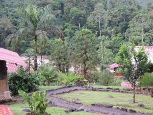 Pacuare River Lodge, Лоджи  Bajo Tigre - big - 29