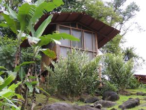 Pacuare River Lodge, Лоджи  Bajo Tigre - big - 5