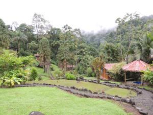 Pacuare River Lodge, Лоджи  Bajo Tigre - big - 20