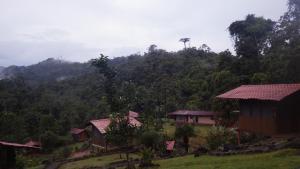 Pacuare River Lodge, Лоджи  Bajo Tigre - big - 21